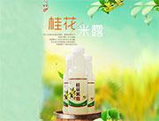 桂花米露430ml