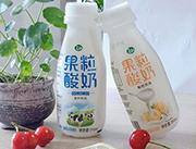 果粒酸奶�品340ml
