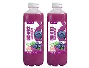 发酵蓝莓汁1.25L