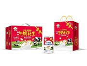 牛奶花生复合蛋白饮料礼盒装