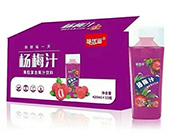 杨梅汁420mlX15瓶
