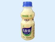 乳酸菌 �L味�品340ml