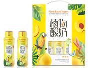 Plants-of-yogurt植物酸奶黄桃味210gx10瓶