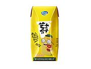 芝士分子酸奶�品200g