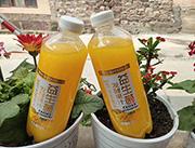 益生菌�l酵芒果汁1.25L