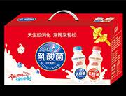 蓝嘉源乳酸菌风味饮品礼盒装