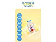 惠氏7种乳酸菌330ml瓶装