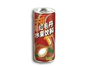 椰星红毛丹水果饮料245g