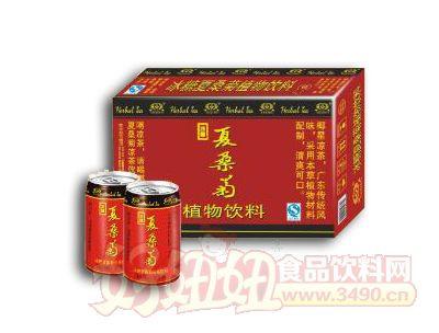 椰星冰糖夏桑菊凉茶310ml×24罐