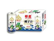 椰星泰式鲜榨椰子汁245g×15/20/24罐