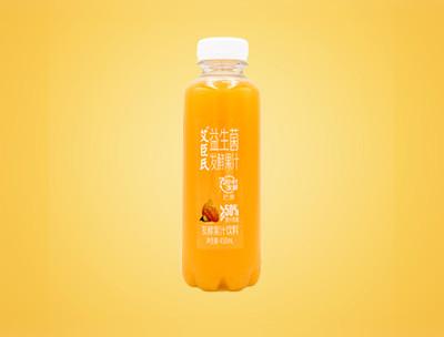 艾臣氏益生菌发酵果汁芒果味450ml