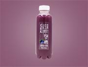 艾臣氏益生菌�l酵果汁�{莓味450ml