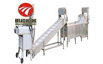 枣子烘干机加工企业红枣加工设备价格