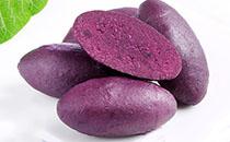 百草味紫薯仔�r格