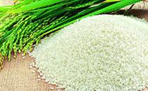 安徽蚌埠地区稻米的市场价格