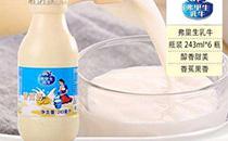 弗里生乳牛烤酸奶�r格