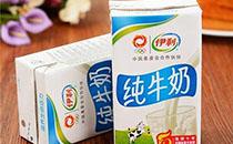 伊利牛奶促销价格表