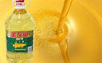 昨日各地豆油价格有上升趋势