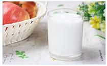 摩菲水牛纯牛奶价格