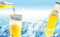 北冰洋桔汁汽水价格