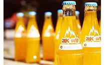 冰峰汽水价格,冰峰汽水多少钱一罐