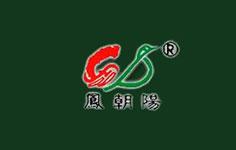 市县组织部领导与凤朝阳员工座谈
