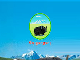 西藏藏北牦牛肉制品有限公司