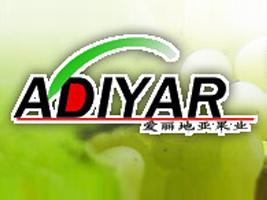 吐鲁番市爱丽地亚果业有限责任公司