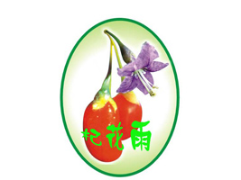 宁夏阜源绿色保鲜研究所企业LOGO