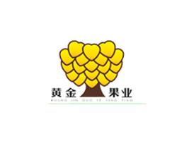 吐鲁番黄金果业饮品有限公司