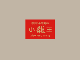 湖南小龙王食品有限公司