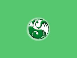 华池县凤川白瓜籽有限责任公司