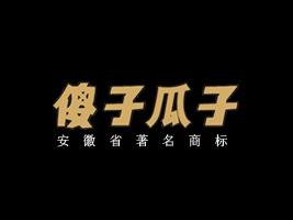 安徽省傻子经济发展有限公司
