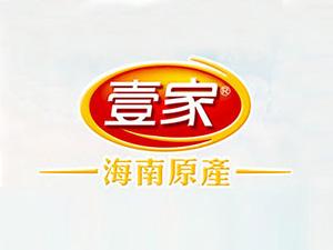 海南壹家食品有限公司