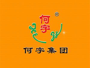 浙江何字食品有限公司