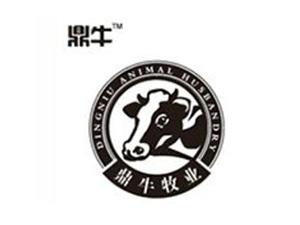 山东京翰商务科技有限公司