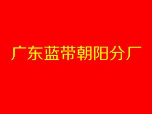 广东蓝带朝阳分厂