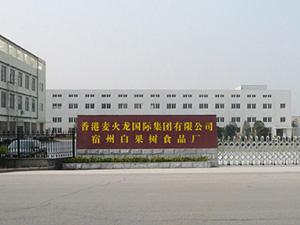 香港麦火龙国际集团有限公司