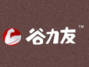 宁晋县利龙食品有限公司