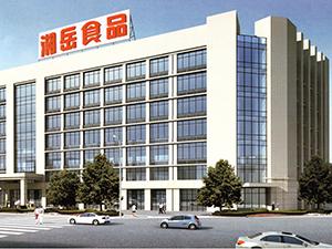 湖南湘岳食品有限公司