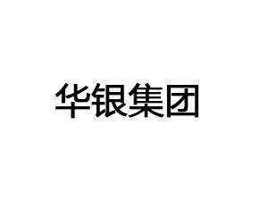 安徽省华银集团