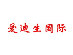爱迪生国际集团(中国)有限公司