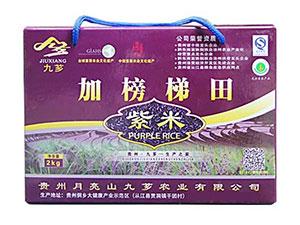 贵州月亮山九芗农业有限公司