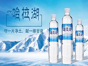 青海雪源雪醇食品有限公司