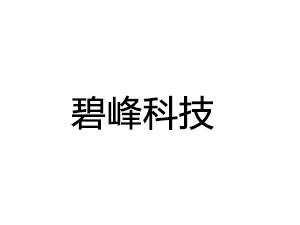 碧峰科技有限公司