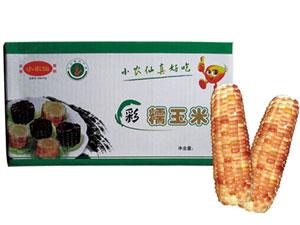 徐州小农仙玉米种植专业合作社