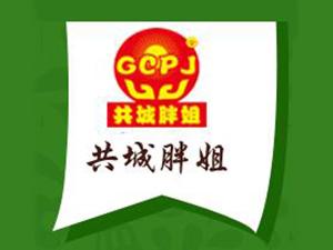 河南胖姐食品有限公司企业LOGO