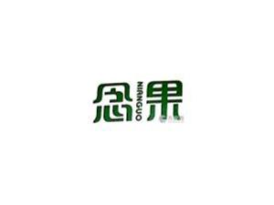 念果(上海)实业发展有限公司企业LOGO