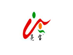 上海亮宝生物科技有限公司