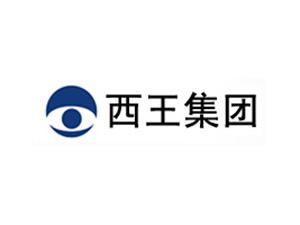 西王集团有限公司